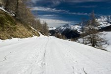 Free LaThuile, Snow, Trees And Slopes Stock Images - 4474444