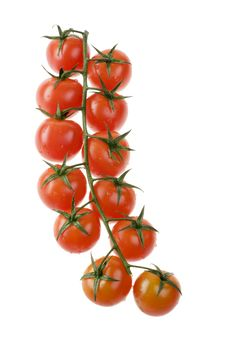 Free Tomatoes Isolated Over White Stock Photo - 4474670