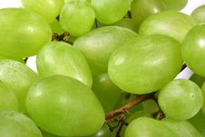Free Green Grapes Royalty Free Stock Photos - 4474698