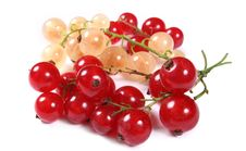 Free Fresh Red And White Currants Stock Images - 4474714