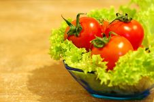 Free Fresh Salad With Tomatoes Stock Photography - 4475222