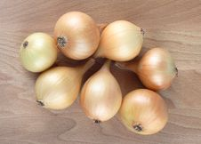 Free Onion Stock Photography - 4475912