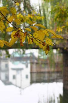 Zhouzhuang Royalty Free Stock Photo