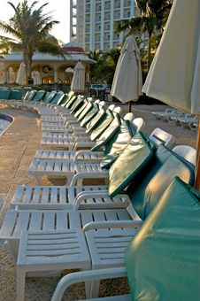 Swimming Pool  Chairs And Green  Palms Royalty Free Stock Images