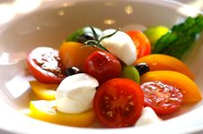 Free Tomato Salad Royalty Free Stock Photos - 4479418