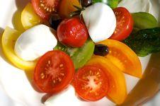 Free Tomato Salad Royalty Free Stock Image - 4479596
