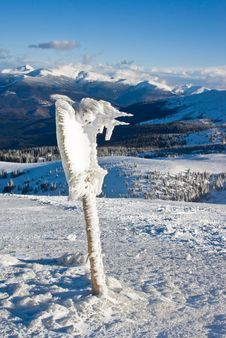 Free Ice Bird Figure On The Top Of The Mount In Winter Stock Photos - 4479943