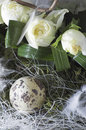 Free Easter Bouquet - Detail Stock Images - 4481134