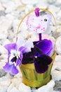 Free Easter Still-life Stock Photos - 4482803