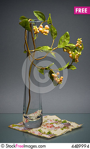 Free Glass Vase With Stem Of Berries On Gray Stock Images - 4489994