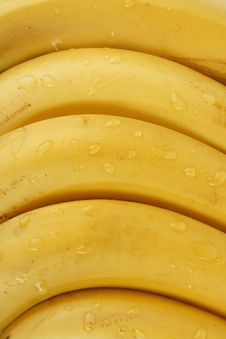 Free Bananas Stock Photo - 4480750