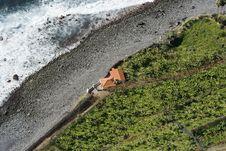 Free Madeira Landscape Royalty Free Stock Image - 4480986