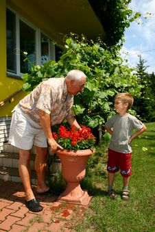 Free Grandfather And Grandson Stock Photo - 4481100