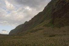 Free Madeira Landscape Royalty Free Stock Photo - 4481185