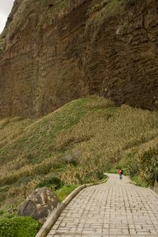 Free Madeira Landscape Royalty Free Stock Photography - 4481217