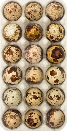 Free Quail Eggs In Box Royalty Free Stock Photos - 4481698