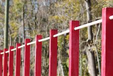 Free Row Of Chin Up Bars Royalty Free Stock Image - 4483036