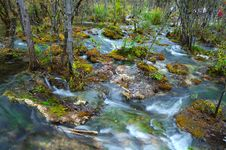 Water In JiuZhaigou Royalty Free Stock Photography
