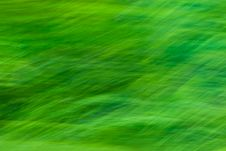 Free Beautiful Organic Green Texture Stock Photo - 4484170