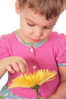 Free Little Girl With Yellow Flower Stock Photo - 4484550