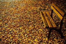 Free Bench In Autumn Stock Image - 4486391