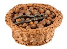Basket Of Whole Hazelnuts Stock Photo