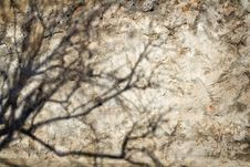 Free Shadow On An Old Wall Stock Photos - 4489593