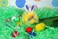 Free Easter Humor Stock Photo - 4491880