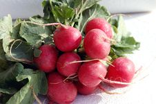 Free Radishes Stock Photography - 4490012