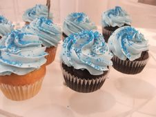 Free Bright Blue Cupcakes Stock Image - 4492121