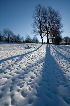 Winter At The Park Royalty Free Stock Photos