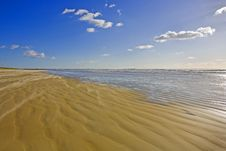 Free Wind On The Beach Royalty Free Stock Photos - 4493568