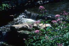 Free Small Waterfall Stock Photo - 4494130