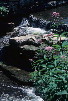 Free Small Waterfall 2 Stock Photography - 4494142