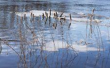 Free Rush And Ice Stock Photo - 4494370