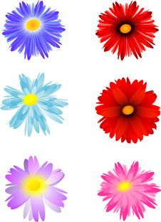 Free Six Flowers Royalty Free Stock Images - 44941099