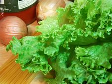 Free Close-up Lettuce And Onions With Pasta Stock Photo - 452000