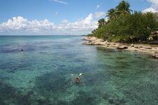Free Snorkeling Stock Image - 453151