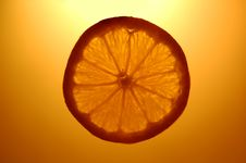 Free Orange Slice Royalty Free Stock Photos - 457548
