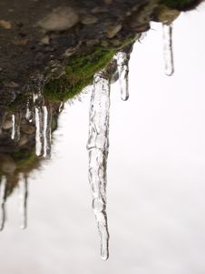 Free Icicles Royalty Free Stock Image - 458486