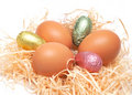 Free Real Easter And Chocolate Eggs Royalty Free Stock Photo - 4507495