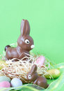 Free Two Chocolate Easter Bunnies Stock Photos - 4507513