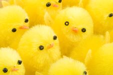 Free Easter Chickens Stock Photography - 4501642