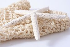 Free Scrubbing Glove With Starfish Royalty Free Stock Images - 4503659