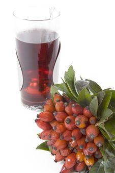 Free Rosehips Tea Stock Image - 4504261