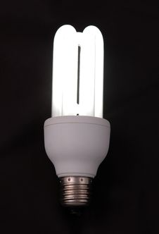 Free CF Bulb Stock Images - 4505814