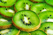 Free Kiwi Stock Photography - 4507652
