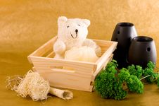 Free Bath Bear Royalty Free Stock Photography - 4509507