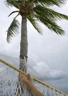 Free Feet In Hammock Royalty Free Stock Images - 4509719