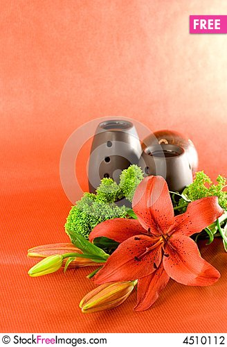 Free Red Lily Scent Stock Photography - 4510112